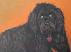 Sparky-Black-Dog-Painting-Pet-Portrait