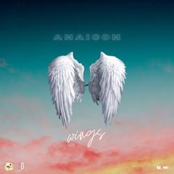 Anaicon Wings