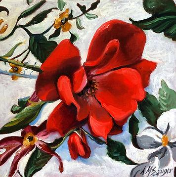 winter-flower.jpg
