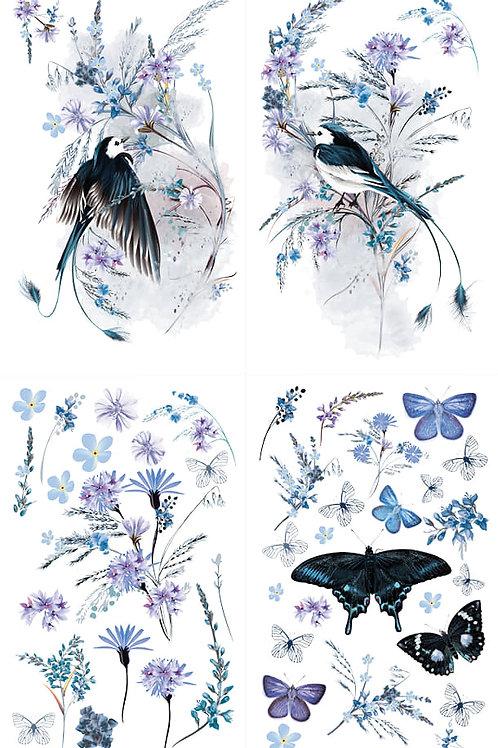 Hokus Pokus Oiseau BlueTransfer