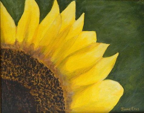 Summer's Sun (original oil 8x10)