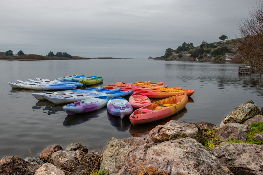 Kayaks of Jenner