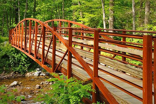 Asheville Bridge