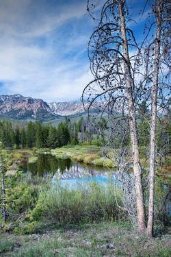 Idaho Mountain Pond