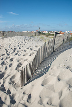 Sand Dunes of Costa Nova