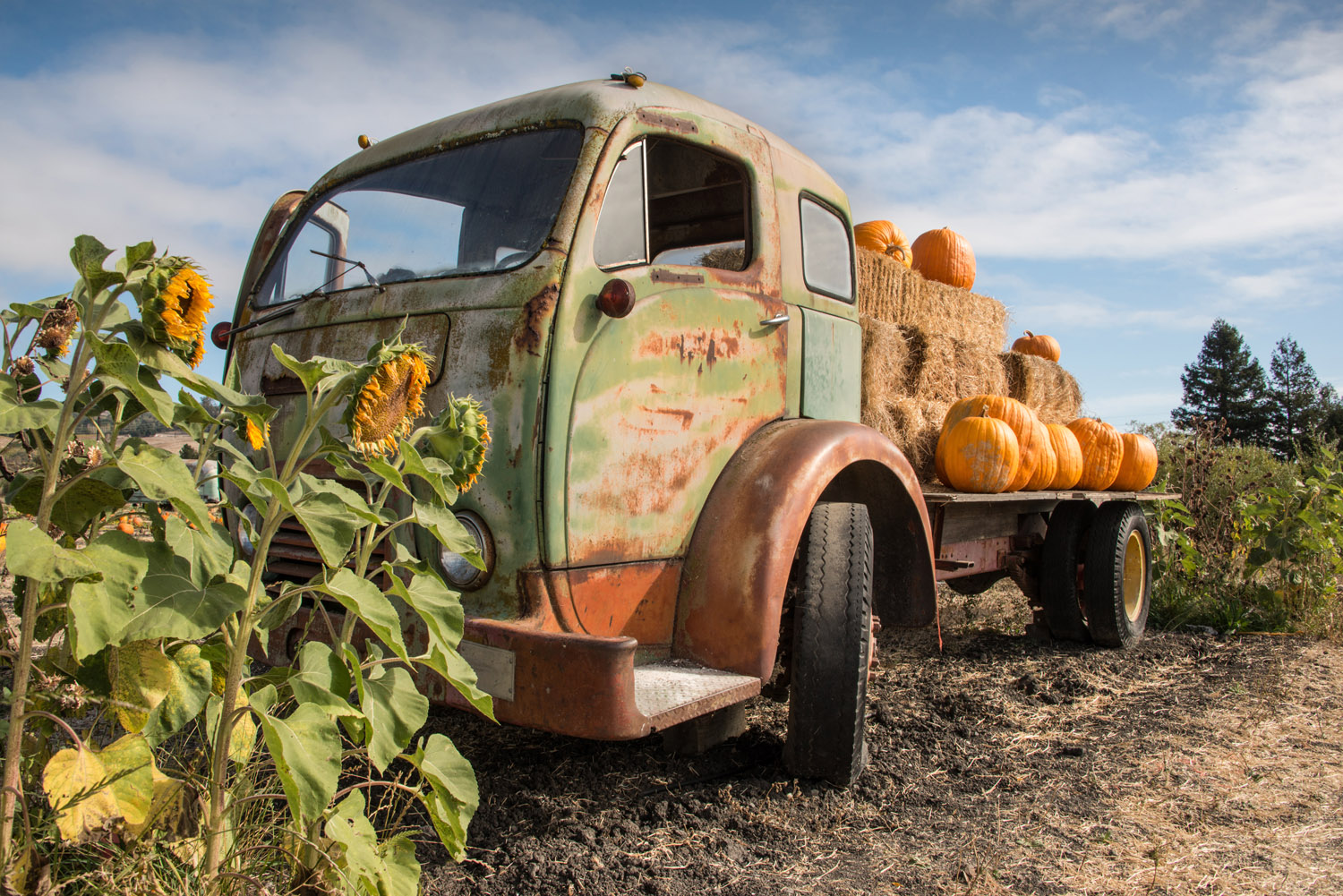 The Old Pumpkin Truck