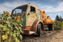 The Old Pumpkin Truck