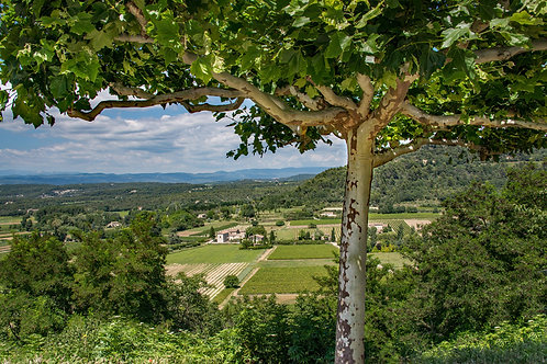 Valley in Provence