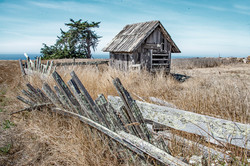 Shed and Fence in Mendocino