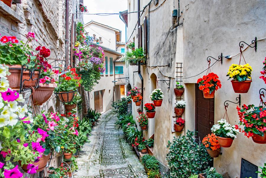 Alleyway in Spello