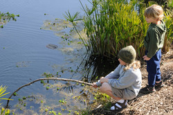 Playing at The Pond