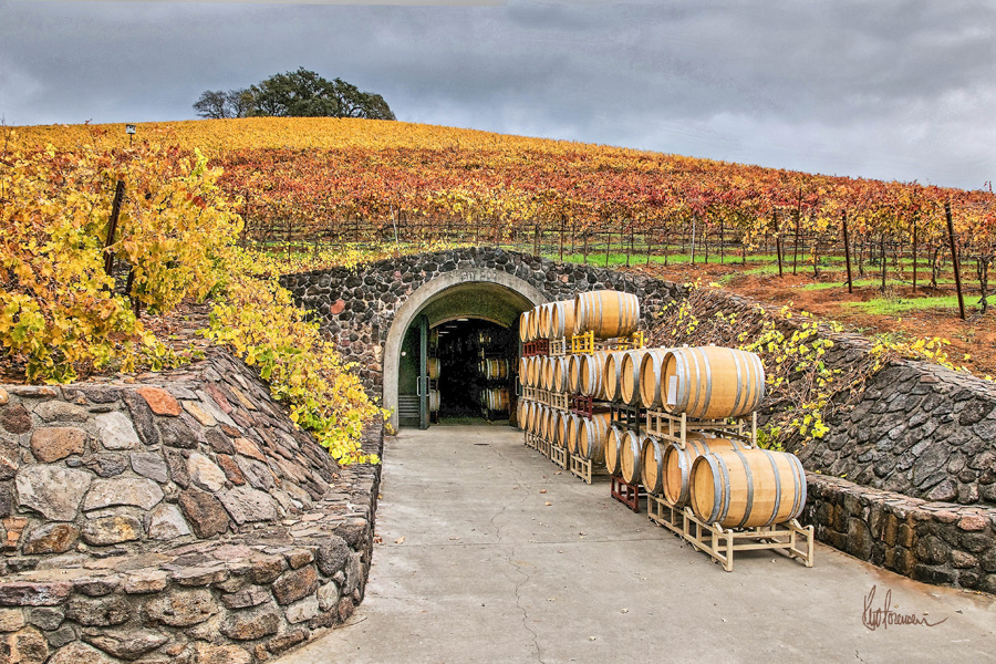Autumn Wine Cave