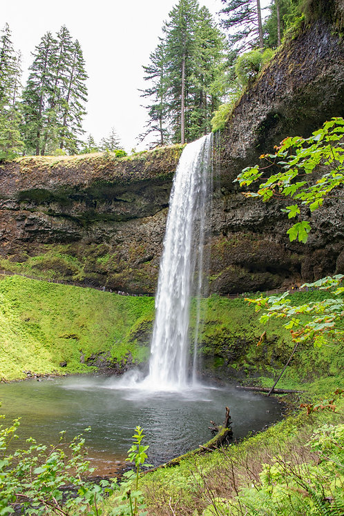 Silver Falls and Pond