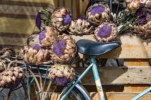 Bicycle and Artichokes