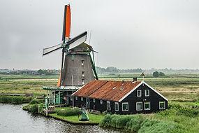 Windmill-07d-SS.jpg
