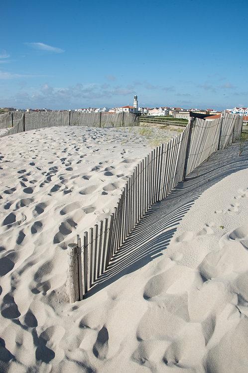 Sand Dunes Vertical
