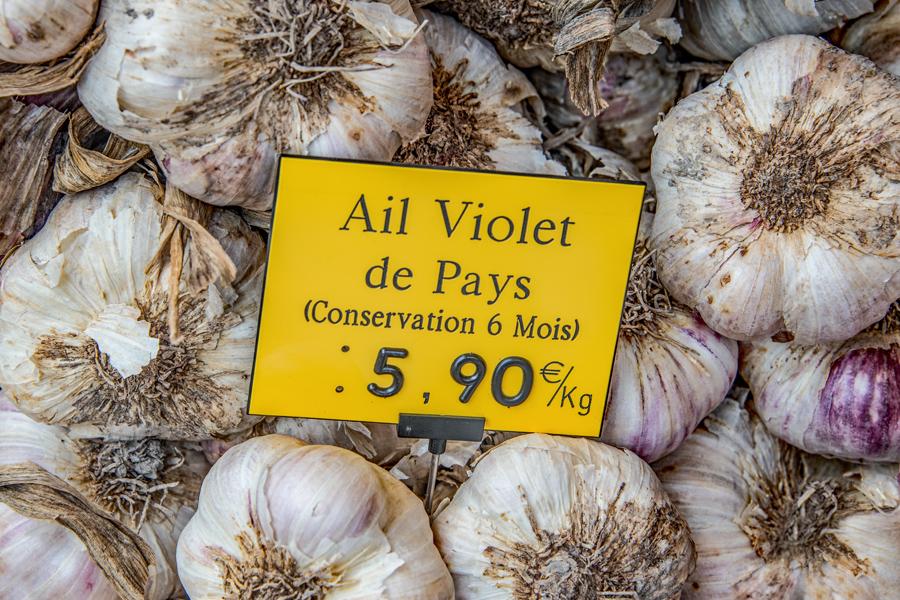 Violet Garlic