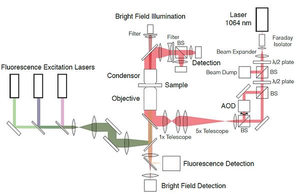 Optical Trap Setup 1.png