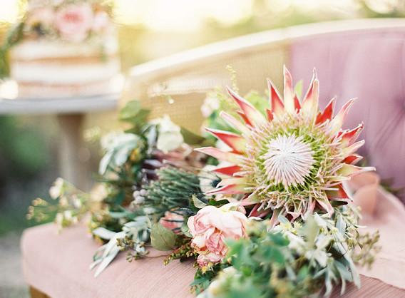 desertflower-19.jpg