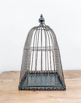 metal-birdcage-rental-utah.jpg