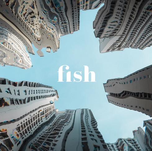 Fish Rebrand