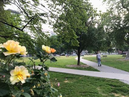 Jane Jacobs Park
