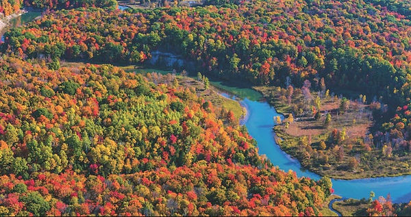 Aerial View of Manistee River Fall Color
