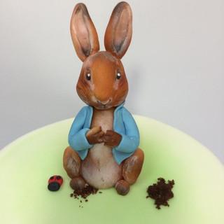 Peter Rabbit-2.jpg