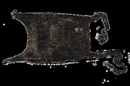 Spearnose skate (Rostroraja alba) eggcase