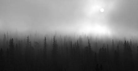 fogrockymountainbw.jpg
