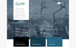 CLINF webb