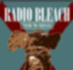 Tributos de rock  Platero y tu extremoduro nirvana español tributosderock platerock transgresivos radiobleach version imposible