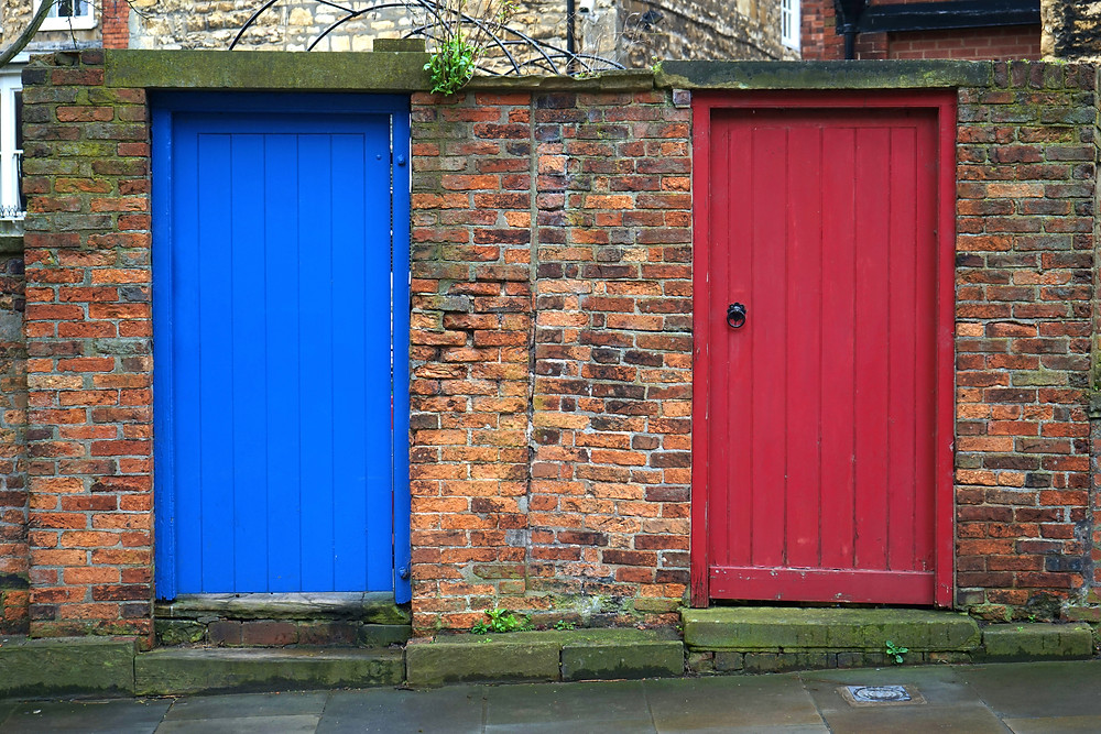 Two doors for choosing where to submit your science manuscript