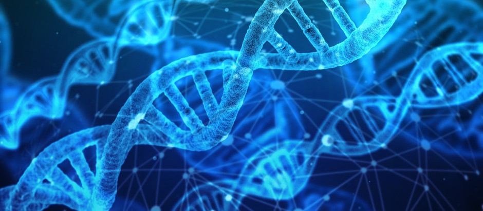 Is DNA/RNA Plural or Singular?
