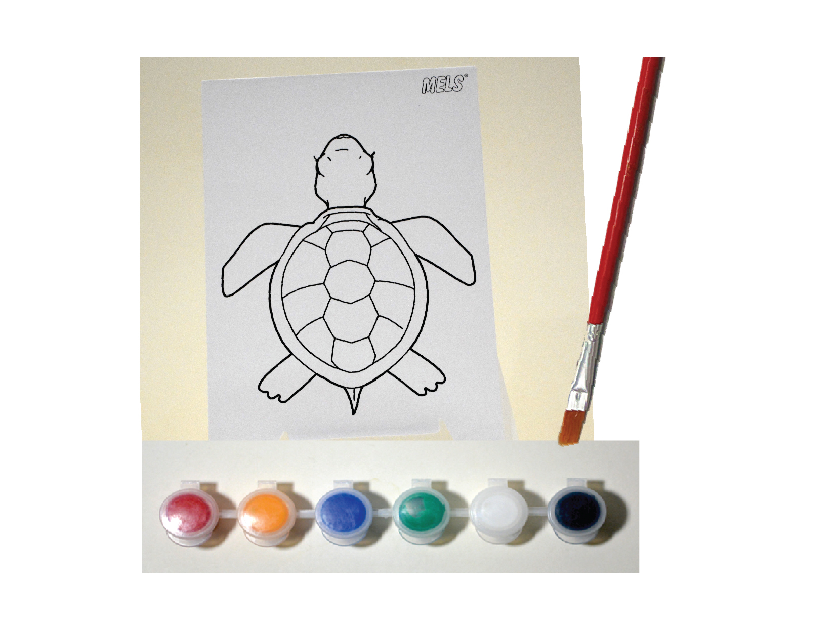 Project 1.3 A Turtle