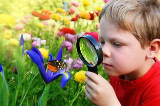 Child observing nature.jpg