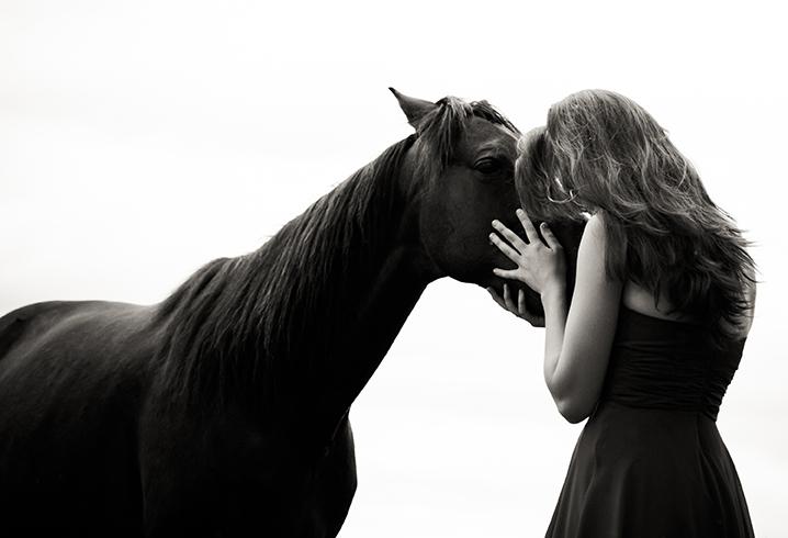 Pferd, Liebe
