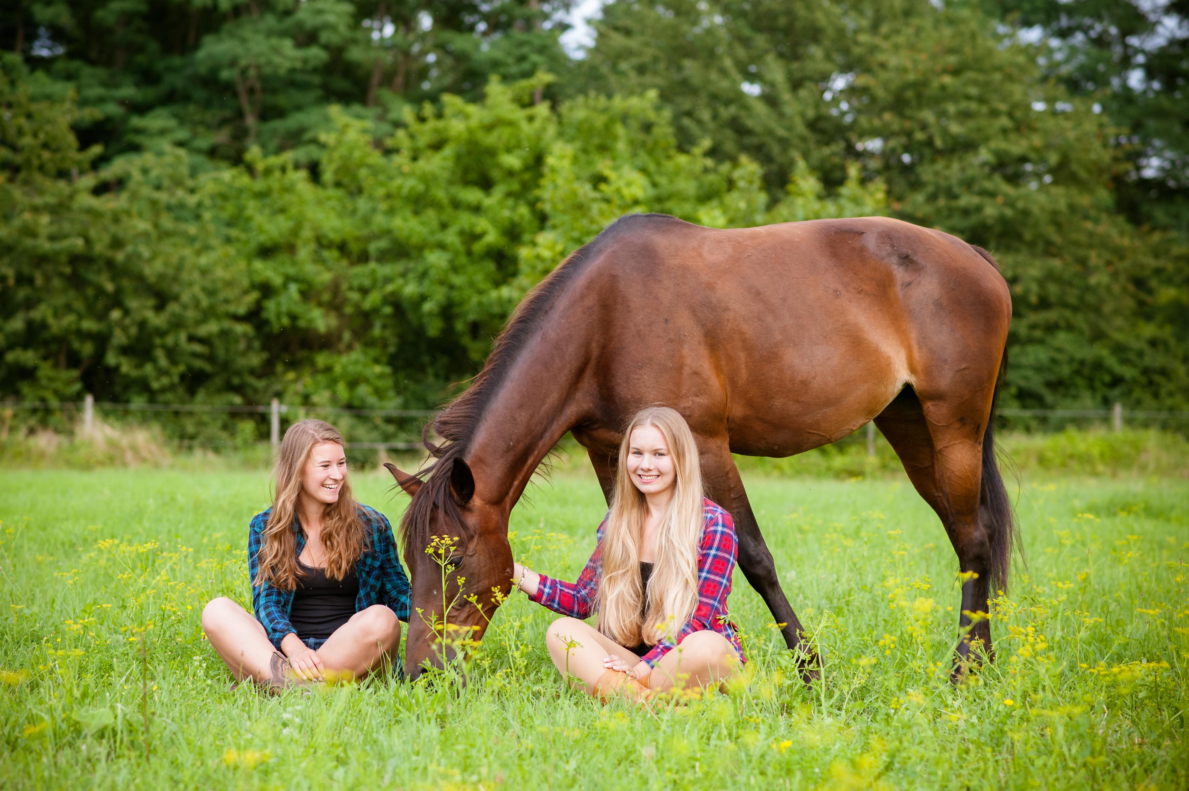 Pferde, Mädchen, Sommer