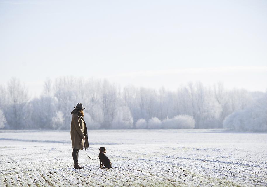 Frau, Hut, Hund, Schnee