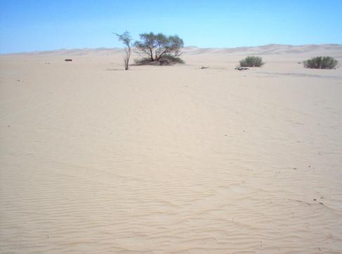 Désert près de Marib