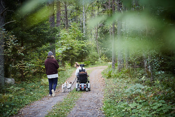 Two ladies are walking with 2 small dogs in the forest on a terrain road. One lady who is holding onto the leashes is seated in an electric scooter, the other lady dressed in black with a grey hat is walking to the left of the dogs.