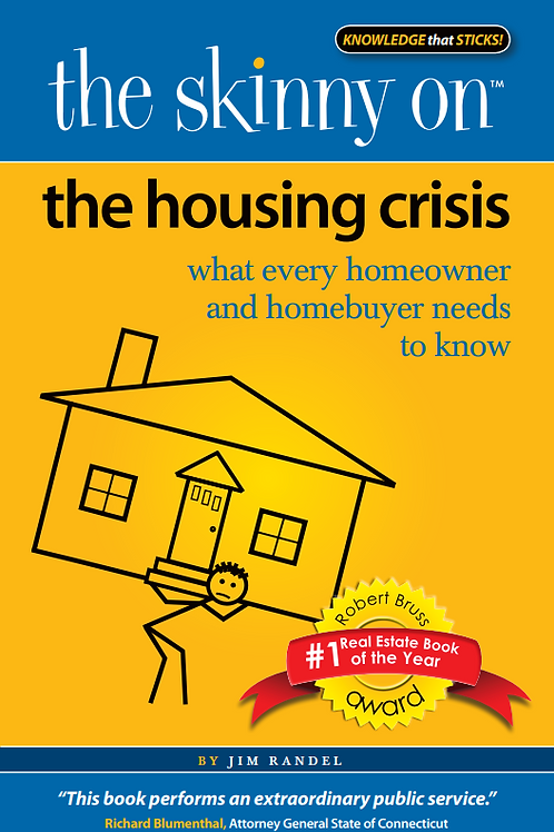 The Skinny on the Housing Crisis   eBook