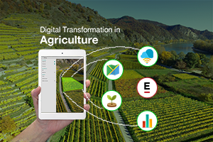 Digital Transformation in Agriculture