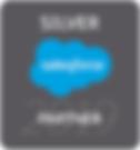 2019-Salesforce-Partner-Badge-Silver-min