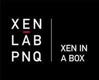 XEN BAG-40-min.png