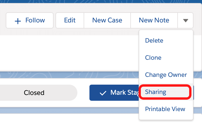 Manual Record Sharing - Salesforce Spring 21 release