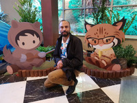 Ten Things We Did NOT Do at Dreamforce 2018