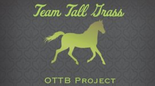 TGH OTTB P (2).PNG