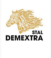 demextra.jpg