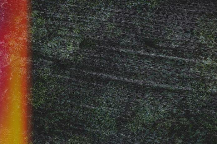 adrien-olichon-1FDVPV_fx1M-unsplash%2520